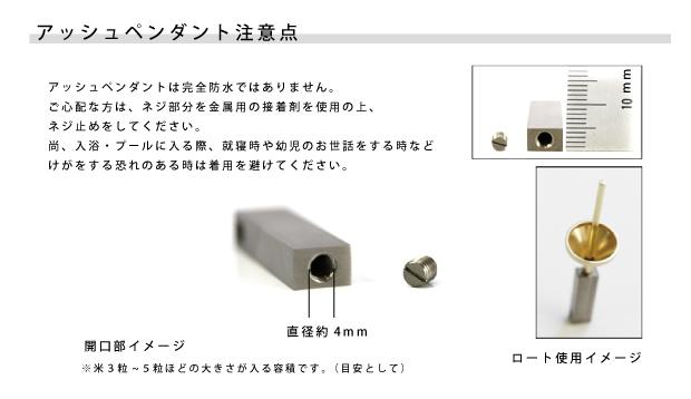 遺骨ペンダント(自身封入タイプ) チタニウム アッシュペンダント TI-005 遺骨の宝石